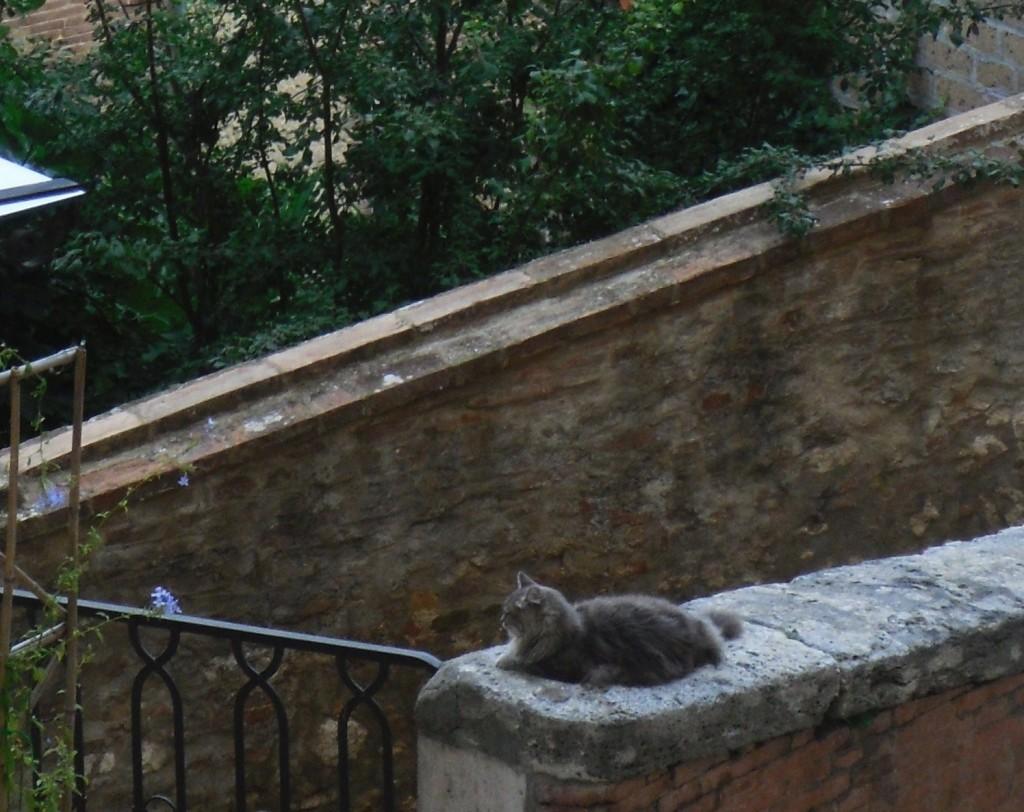 066. Montepulciano_2